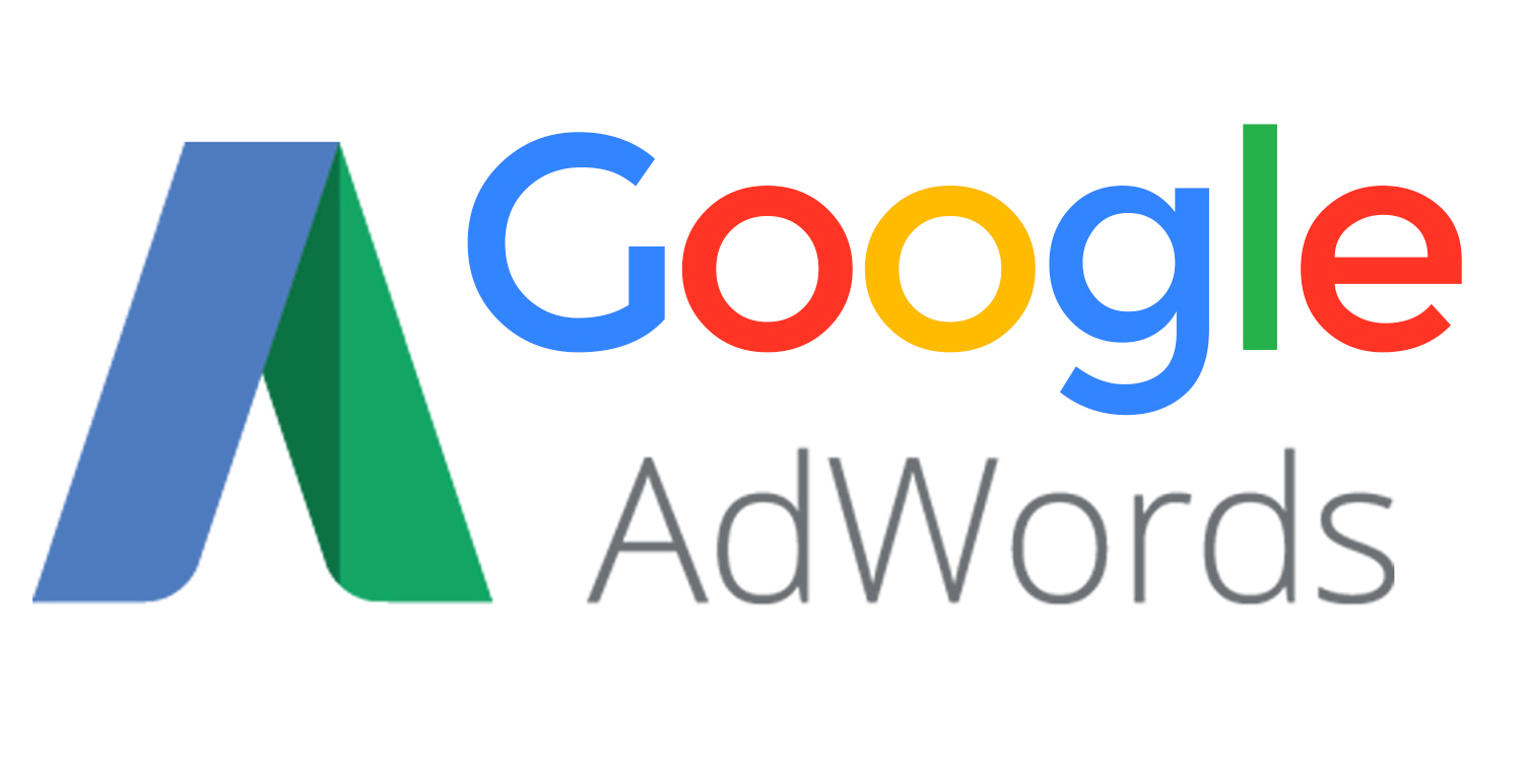Web Corporativa + Campaña Google Adword